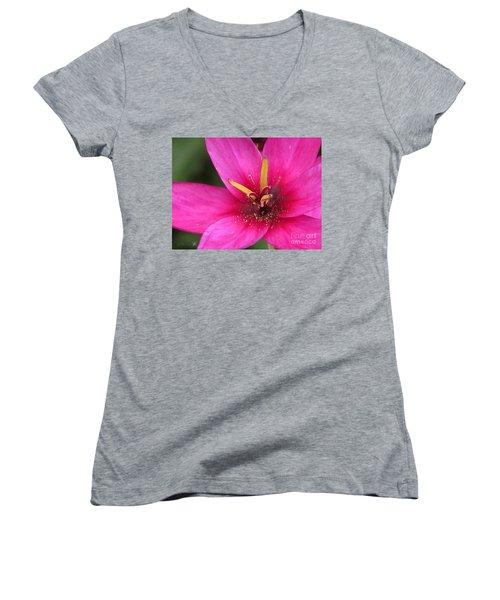 Ixia Named Venus Women's V-Neck T-Shirt (Junior Cut) by J McCombie