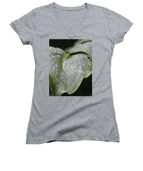 Women's V-Neck T-Shirt (Junior Cut) featuring the photograph Leafy Greens by Tiffany Erdman