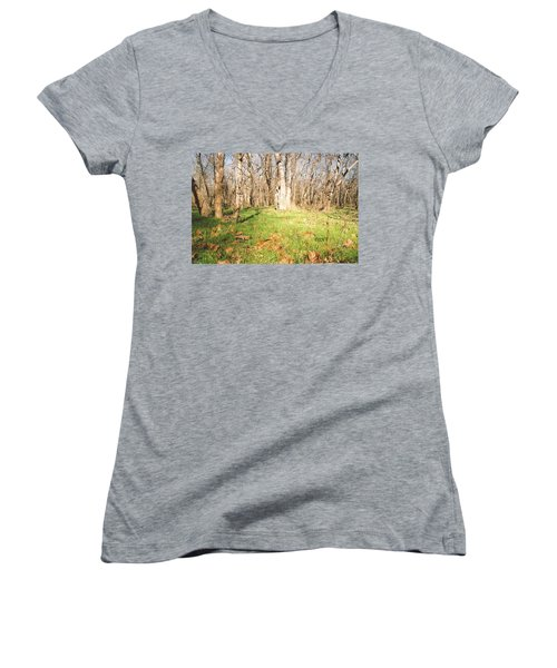 Leaves In The Fall Women's V-Neck T-Shirt
