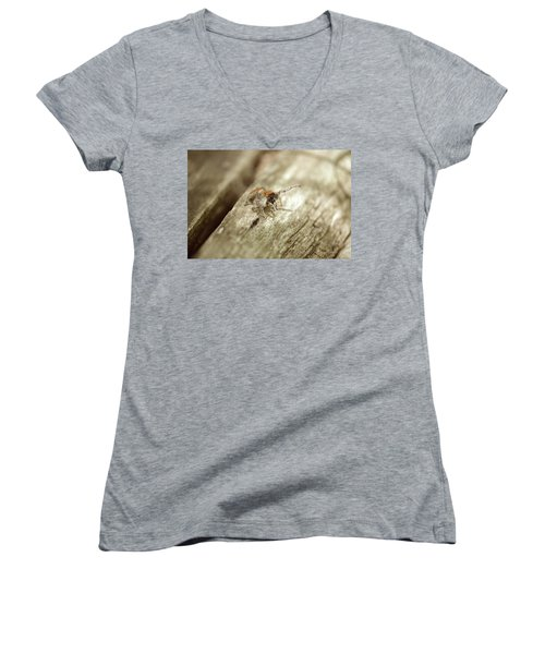 Women's V-Neck T-Shirt (Junior Cut) featuring the photograph Little Jumper In Sepia by JD Grimes