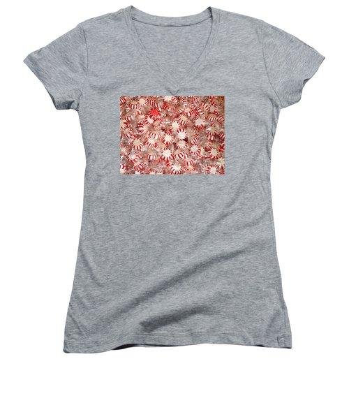 Fun  Mints Women's V-Neck T-Shirt (Junior Cut) by Beth Saffer