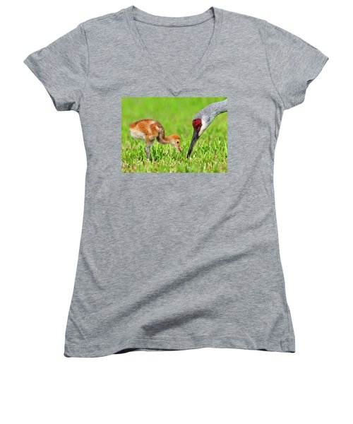 Looking For Bugs Women's V-Neck (Athletic Fit)