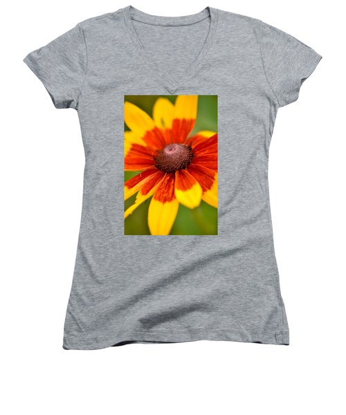 Women's V-Neck T-Shirt (Junior Cut) featuring the photograph Looking Susan In The Eye by JD Grimes