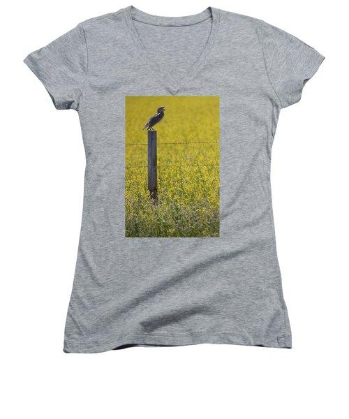 Meadowlark Singing Women's V-Neck T-Shirt