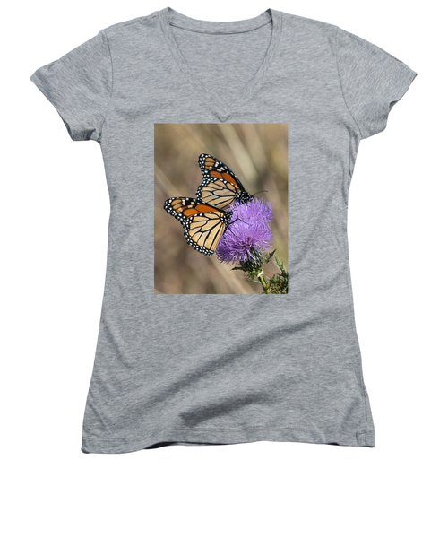 Monarch Butterflies On Field Thistle Din162 Women's V-Neck T-Shirt (Junior Cut) by Gerry Gantt