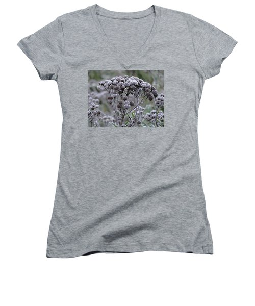 Women's V-Neck T-Shirt (Junior Cut) featuring the photograph Morning Frost by Tiffany Erdman