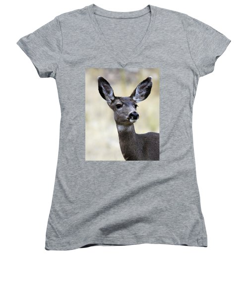 Mule Deer Doe Women's V-Neck T-Shirt (Junior Cut) by Steve McKinzie