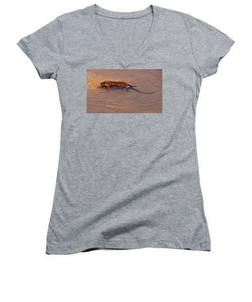 Muskrat Swiming Women's V-Neck