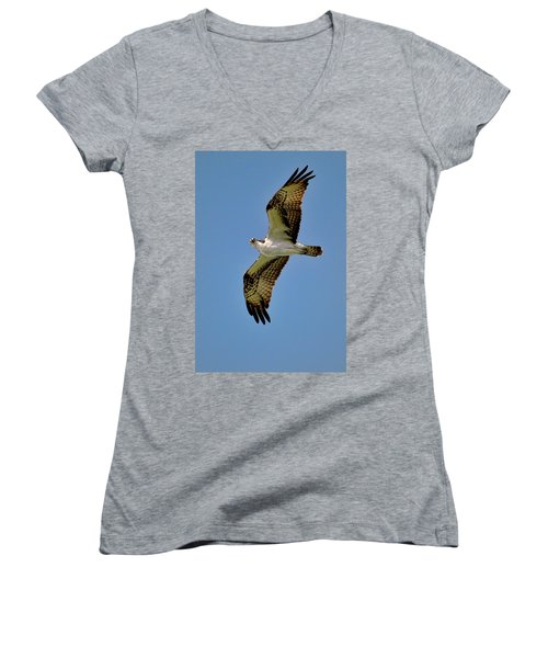 Osprey Above Women's V-Neck (Athletic Fit)