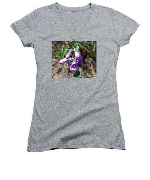 Penstemon Women's V-Neck T-Shirt