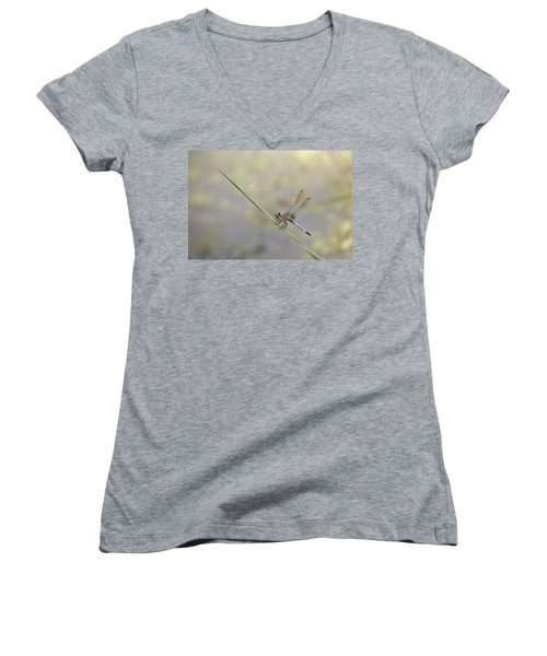 Women's V-Neck T-Shirt (Junior Cut) featuring the photograph Perched Dragon In Sepia by JD Grimes