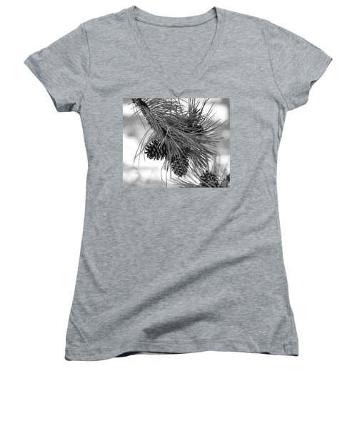 Pine Cones Women's V-Neck T-Shirt