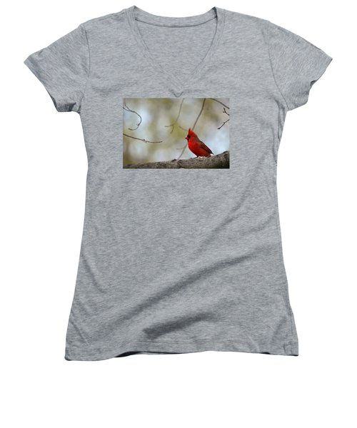 Pop Of Color Women's V-Neck T-Shirt (Junior Cut)