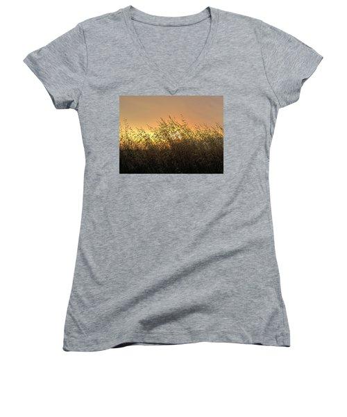 Prairie Dusk Women's V-Neck T-Shirt