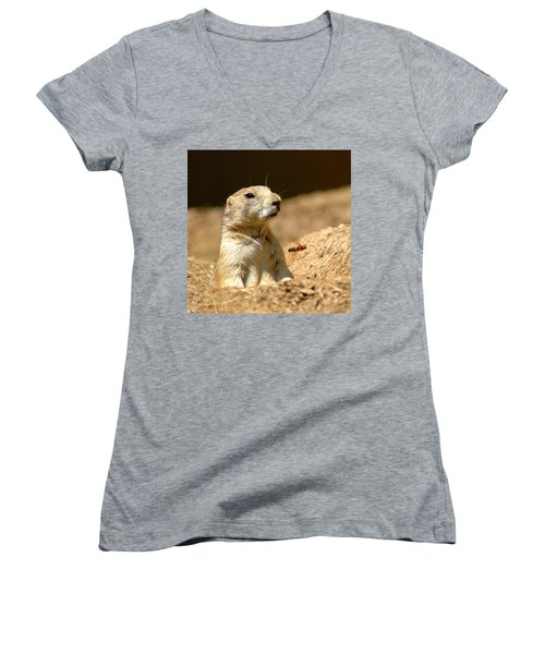 Prarie Dog Bee Alert Women's V-Neck T-Shirt (Junior Cut) by LeeAnn McLaneGoetz McLaneGoetzStudioLLCcom