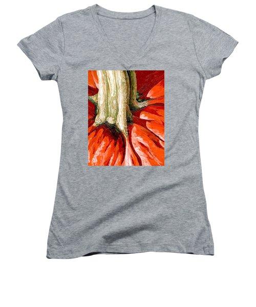 Pumpkin Stem Women's V-Neck T-Shirt
