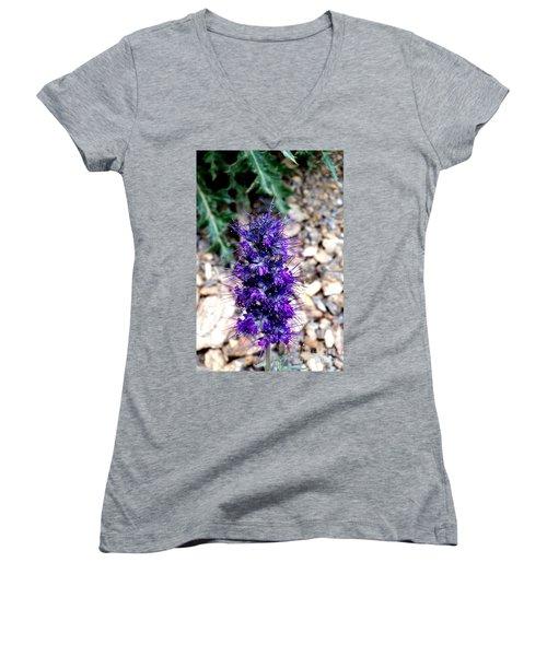 Purple Reign Women's V-Neck T-Shirt
