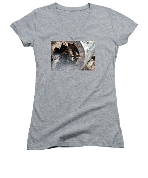 Women's V-Neck T-Shirt (Junior Cut) featuring the photograph Raccoon In Hiding by Kathy  White