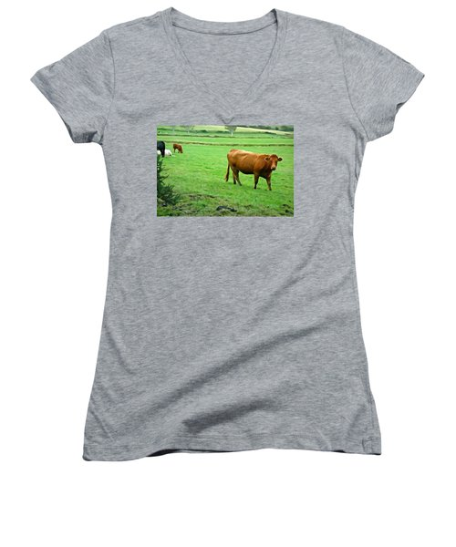 Women's V-Neck T-Shirt (Junior Cut) featuring the photograph Red Cow by Charlie and Norma Brock