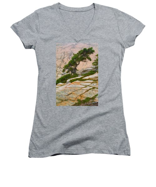 Schoodic Cliffs Women's V-Neck