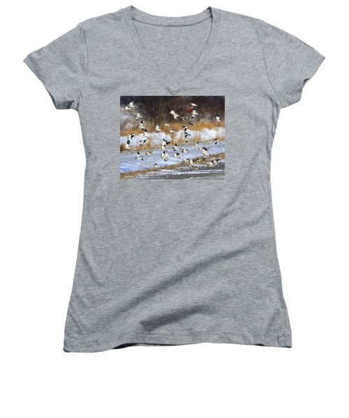 Snow Buntings Women's V-Neck T-Shirt (Junior Cut) by Tony Beck