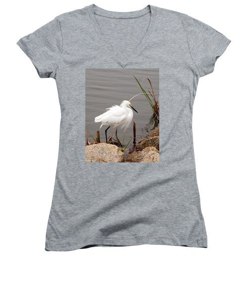Women's V-Neck T-Shirt (Junior Cut) featuring the photograph Snowy Egret by Kay Lovingood