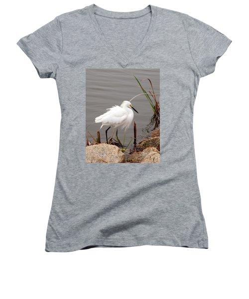 Snowy Egret Women's V-Neck T-Shirt