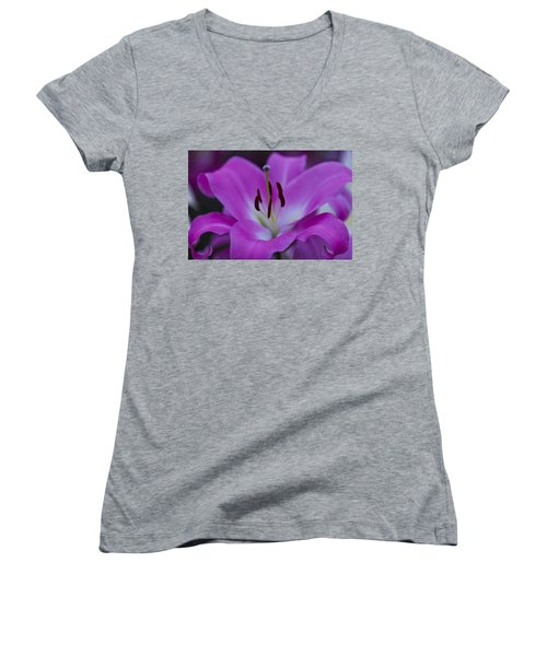 Soft Purple Women's V-Neck (Athletic Fit)