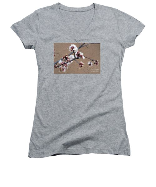 Spring Promises Women's V-Neck T-Shirt