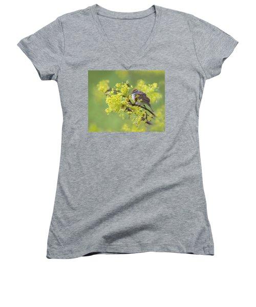 Spring Reverie Women's V-Neck T-Shirt