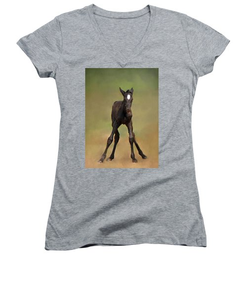 Standing On All Fours Women's V-Neck (Athletic Fit)