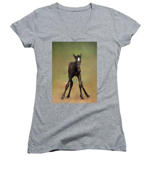 Standing On All Fours Women's V-Neck T-Shirt