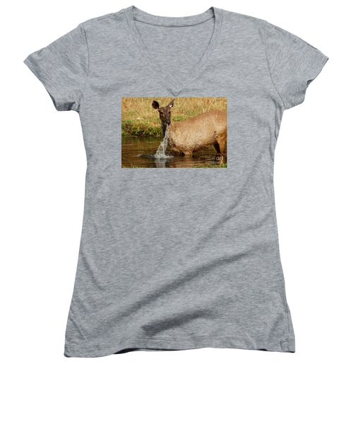 Women's V-Neck T-Shirt (Junior Cut) featuring the photograph Startled by Fotosas Photography