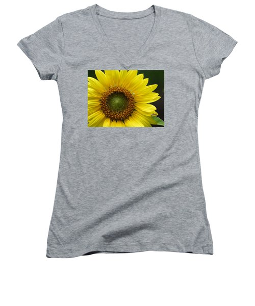 Sunflower With Insect Women's V-Neck T-Shirt (Junior Cut) by Daniel Reed