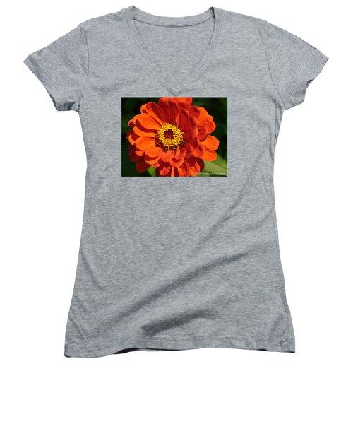 Women's V-Neck T-Shirt (Junior Cut) featuring the photograph Sunny Delight by Lingfai Leung