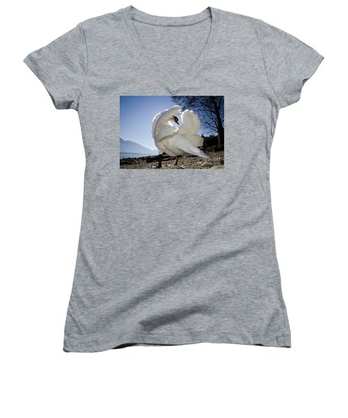 Swan In Backlight Women's V-Neck