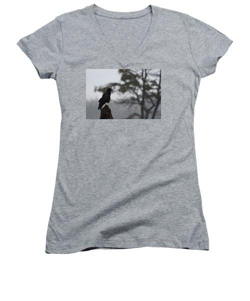 Women's V-Neck T-Shirt (Junior Cut) featuring the photograph The Bachelor by Cathie Douglas