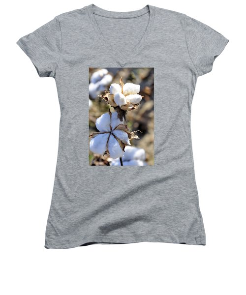 Women's V-Neck T-Shirt (Junior Cut) featuring the photograph The Cotton Is Ready by Jan Amiss Photography