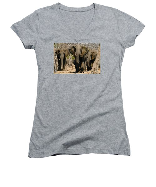 The Herd Women's V-Neck (Athletic Fit)