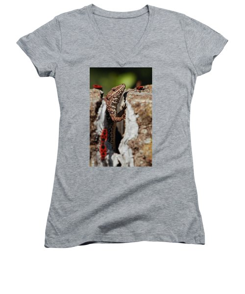 Women's V-Neck featuring the photograph the random Lizard  by Stwayne Keubrick