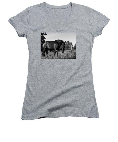 The Stallion Women's V-Neck T-Shirt (Junior Cut) by Davandra Cribbie