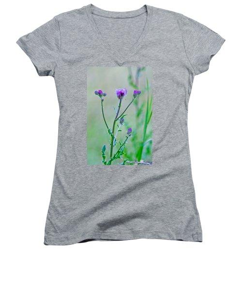 Thistledown Pastel Passion Women's V-Neck T-Shirt