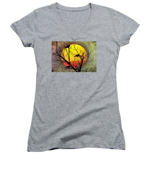 Three Blackbirds Women's V-Neck T-Shirt