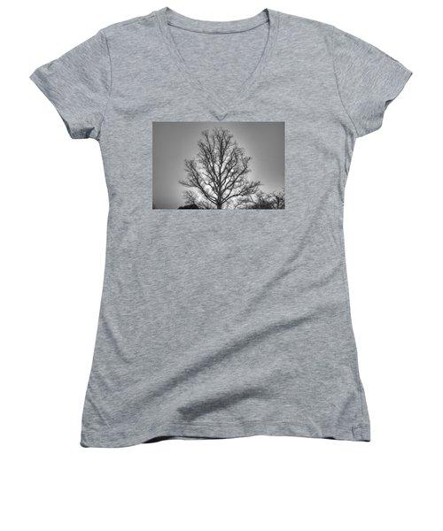 Through The Boughs Bw Women's V-Neck T-Shirt (Junior Cut) by Dan Stone