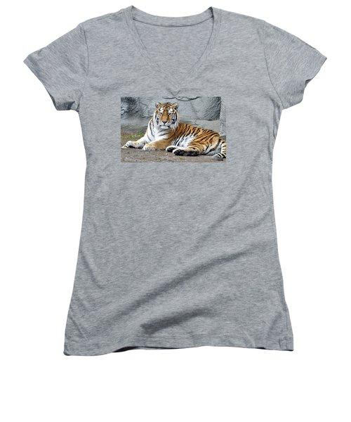 Tiger Resting Women's V-Neck T-Shirt