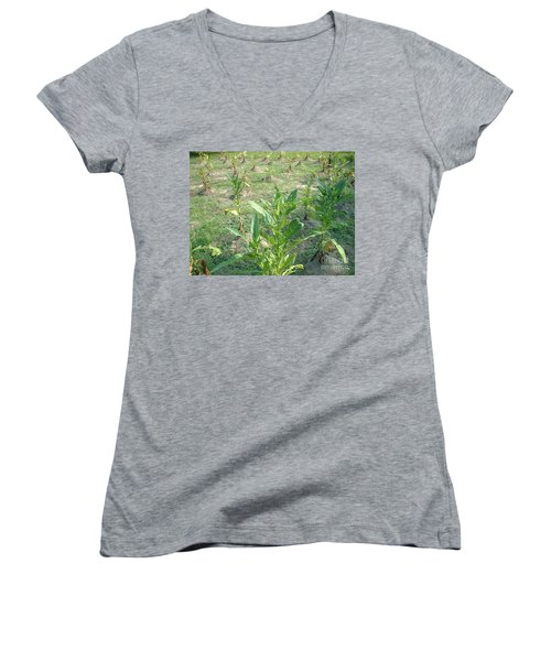 Tobacco Addiction Women's V-Neck T-Shirt