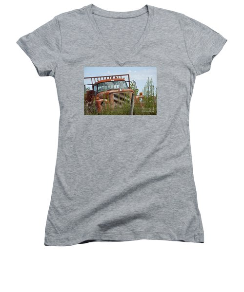 Turned Out To Pasture Women's V-Neck T-Shirt (Junior Cut) by Wilma  Birdwell