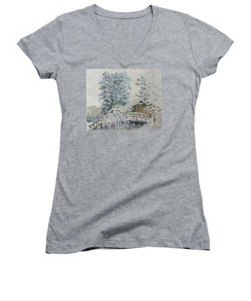 Visiting Fairy Tales Women's V-Neck T-Shirt