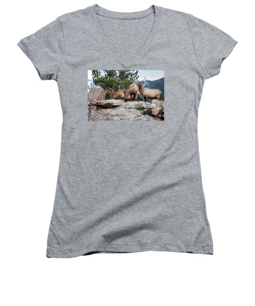 Wapiti Women's V-Neck (Athletic Fit)