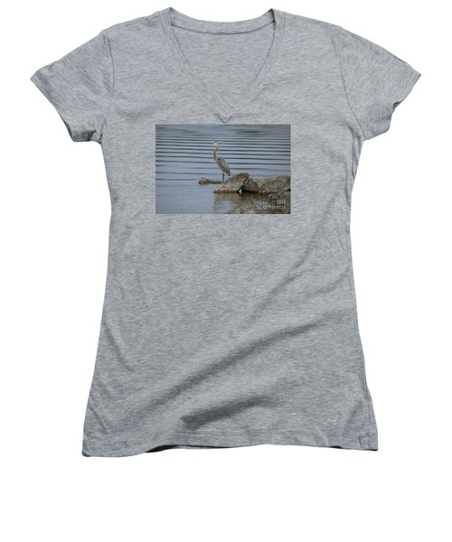 Women's V-Neck T-Shirt (Junior Cut) featuring the photograph Watchful by Eunice Gibb